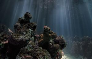 海の撮影写真